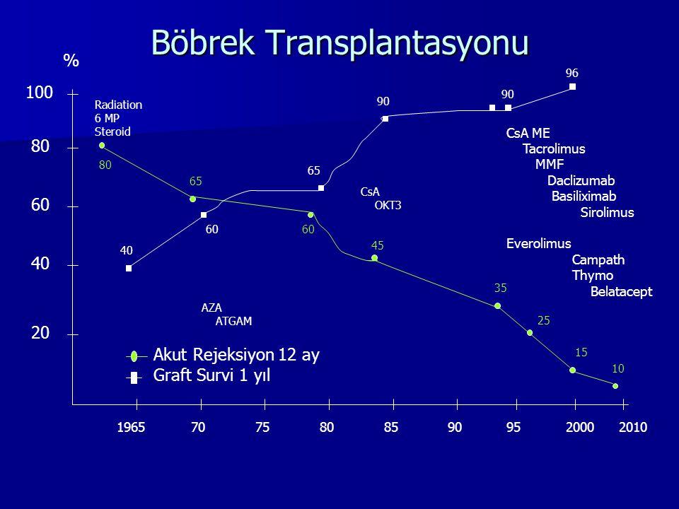 Böbrek Transplantasyonu