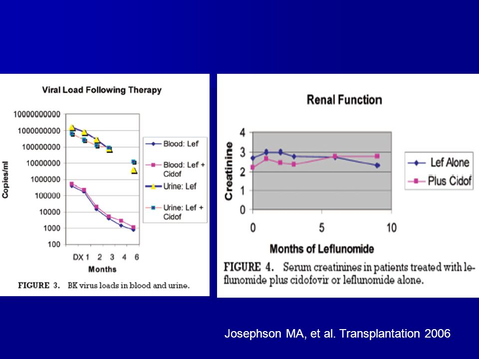 Josephson MA, et al. Transplantation 2006