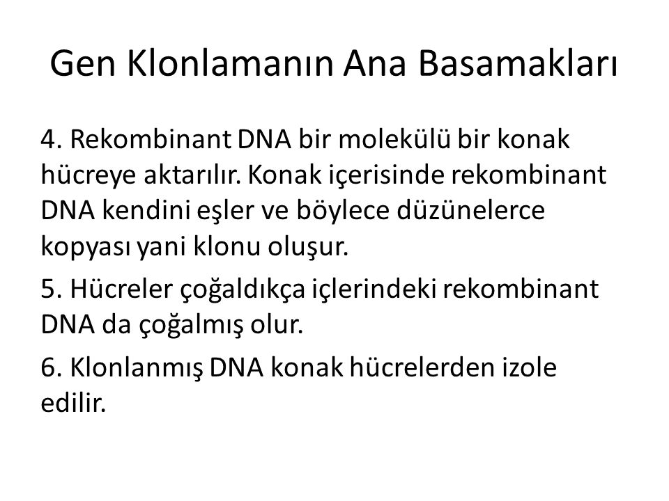 Gen Klonlamanın Ana Basamakları