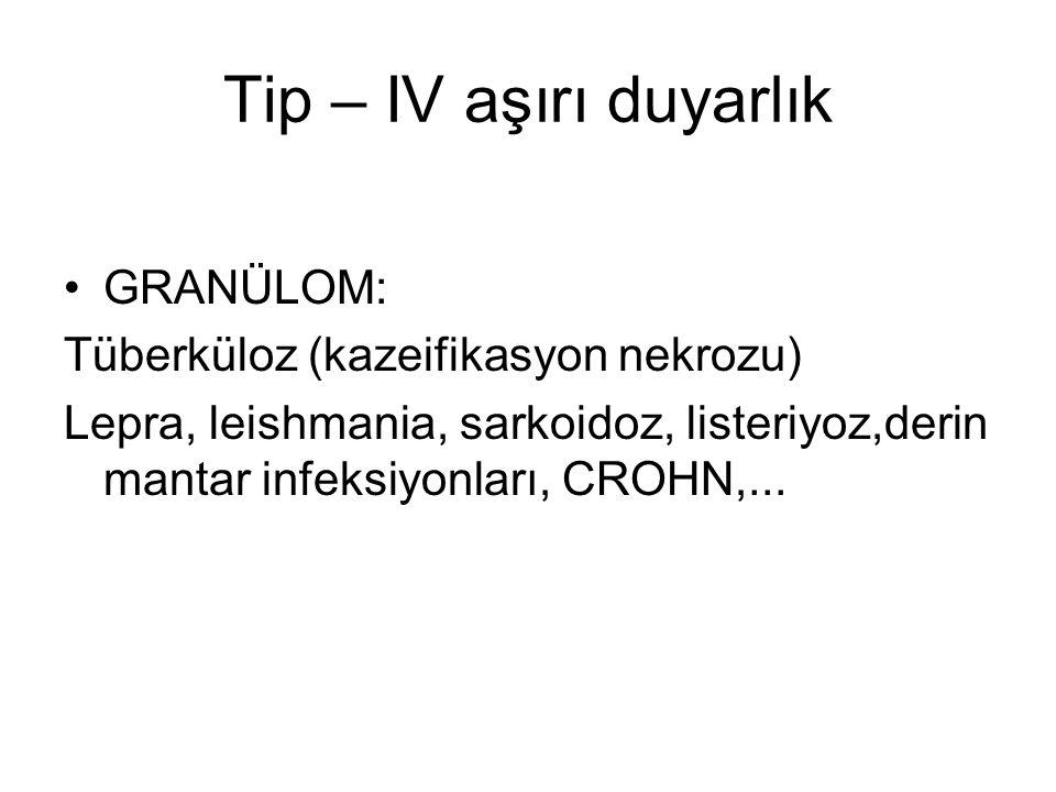 Tip – IV aşırı duyarlık GRANÜLOM: Tüberküloz (kazeifikasyon nekrozu)