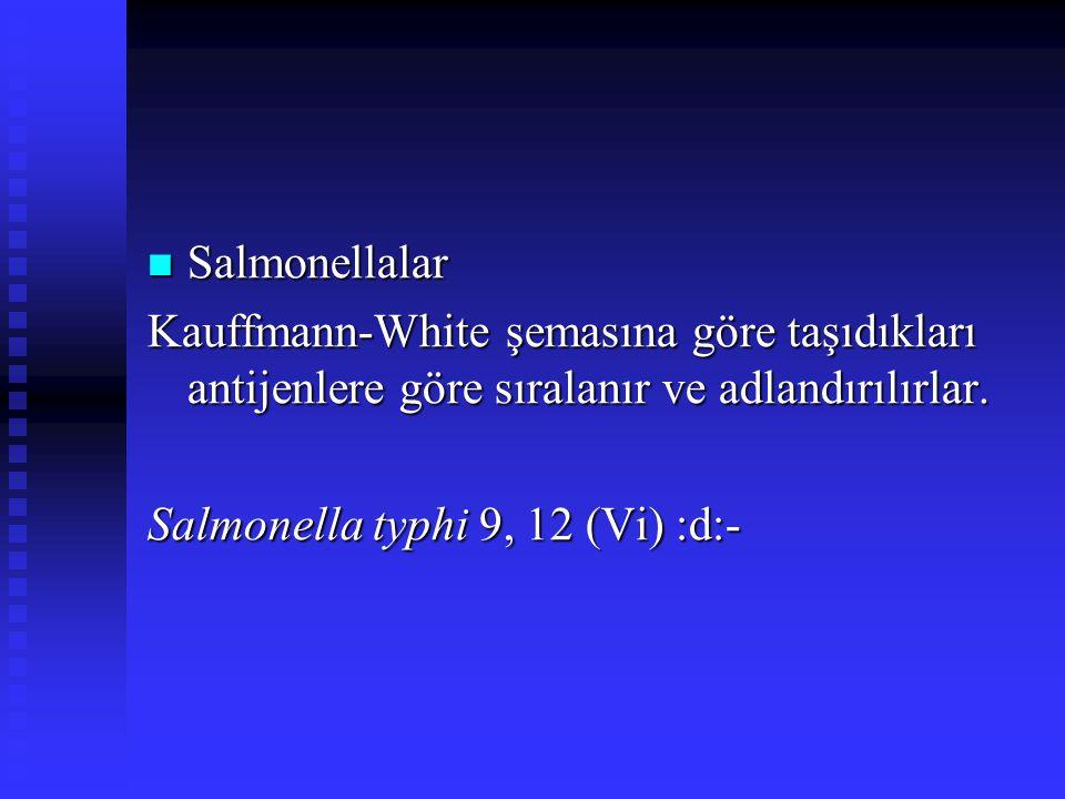 Salmonellalar Kauffmann-White şemasına göre taşıdıkları antijenlere göre sıralanır ve adlandırılırlar.