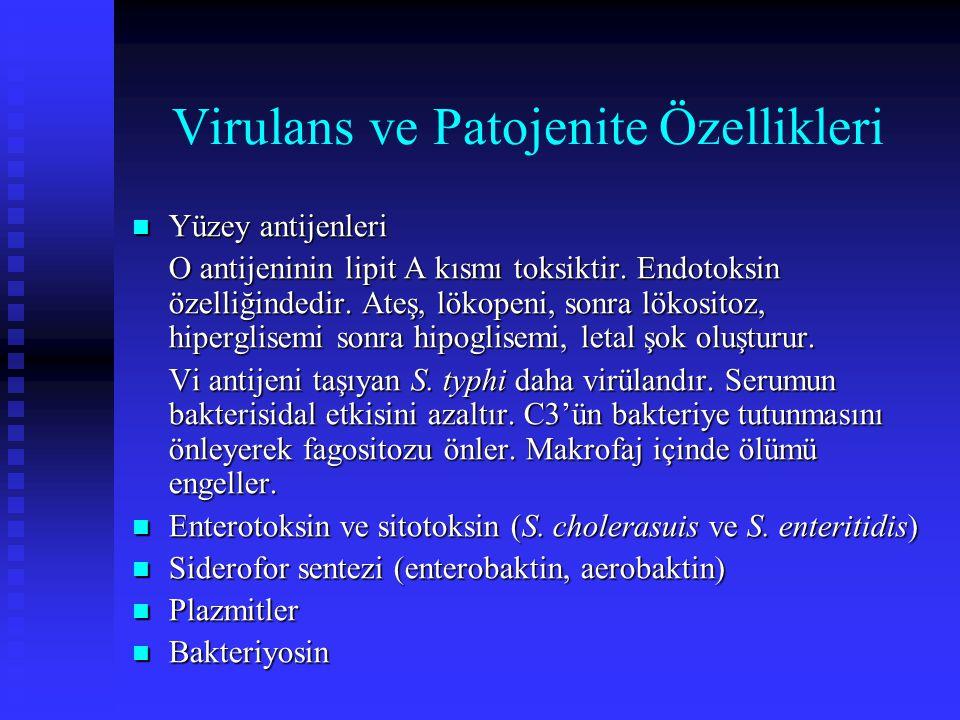 Virulans ve Patojenite Özellikleri