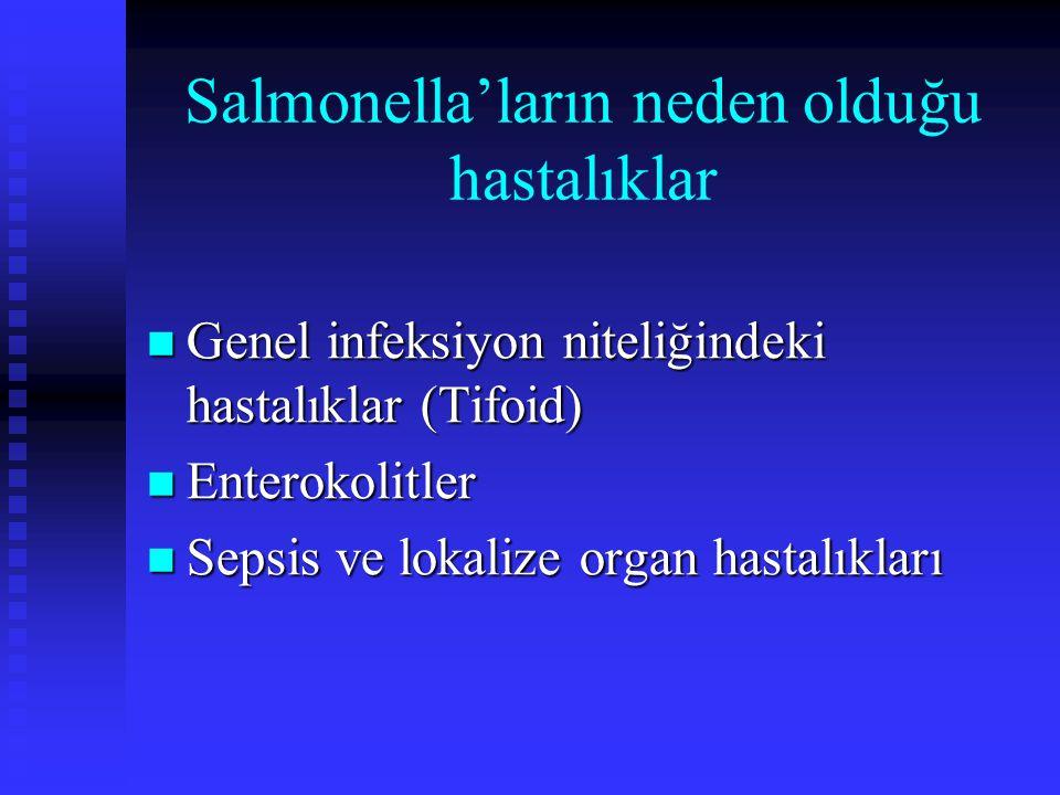 Salmonella'ların neden olduğu hastalıklar