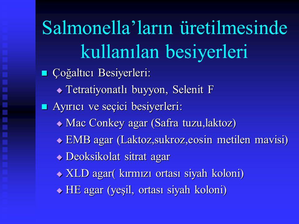 Salmonella'ların üretilmesinde kullanılan besiyerleri