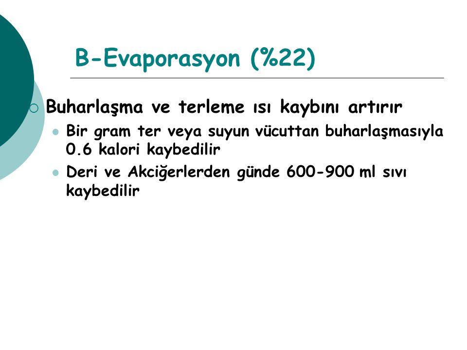 B-Evaporasyon (%22) Buharlaşma ve terleme ısı kaybını artırır