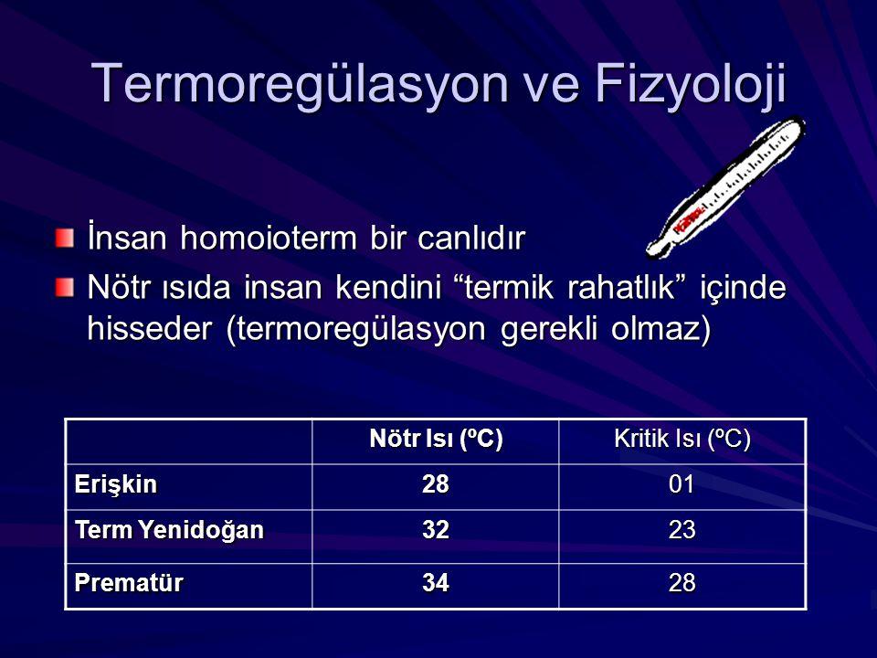 Termoregülasyon ve Fizyoloji