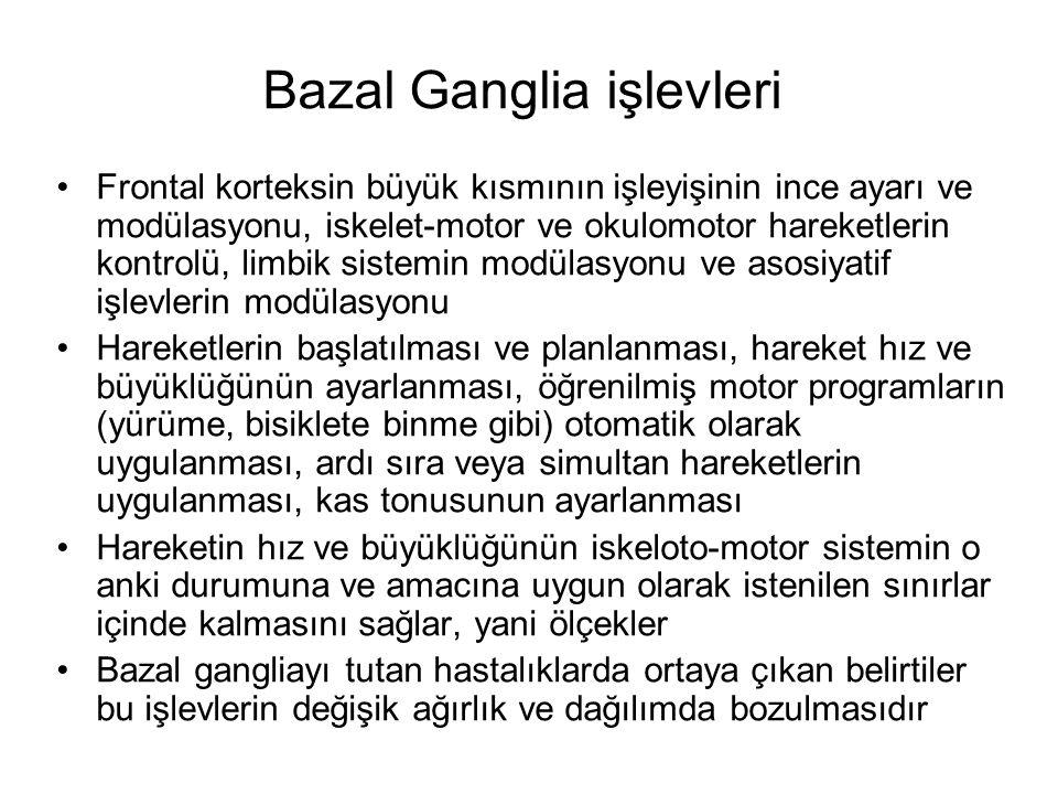 Bazal Ganglia işlevleri
