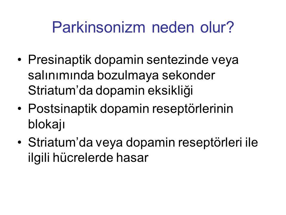 Parkinsonizm neden olur