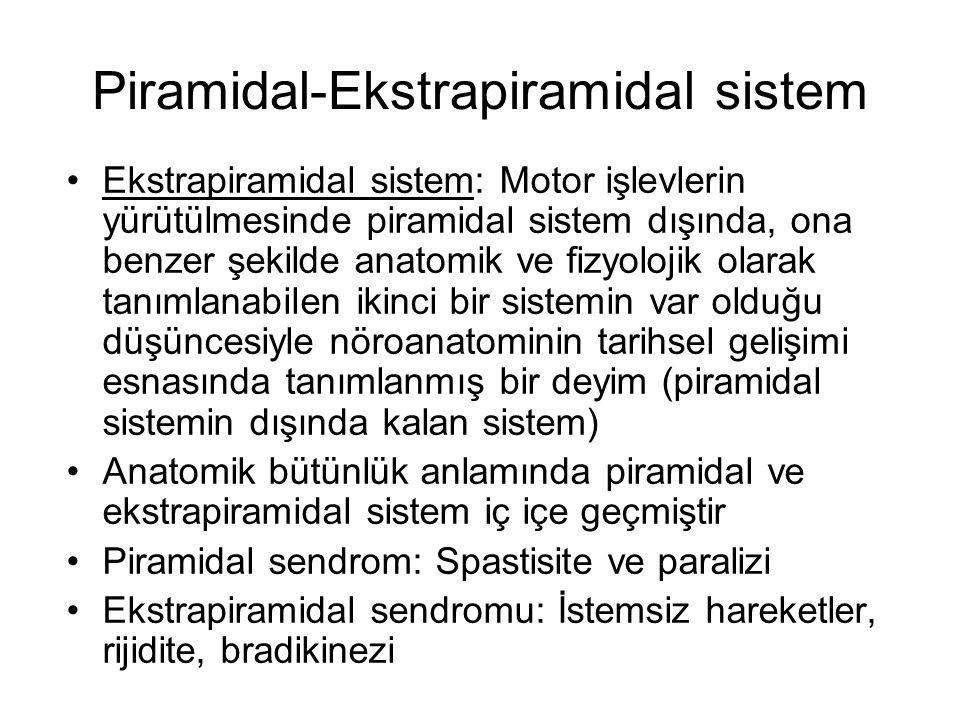 Piramidal-Ekstrapiramidal sistem