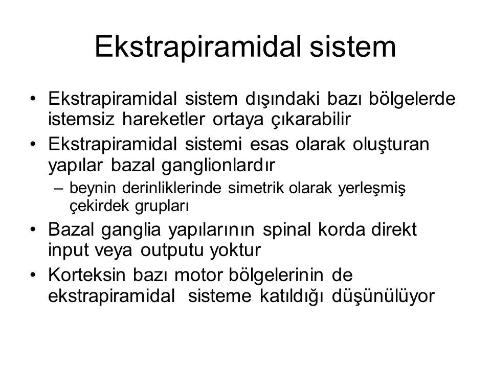 Ekstrapiramidal sistem
