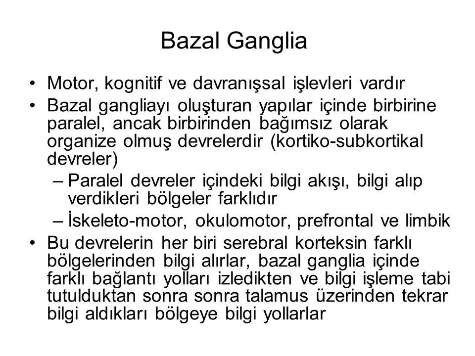 Bazal Ganglia Motor, kognitif ve davranışsal işlevleri vardır