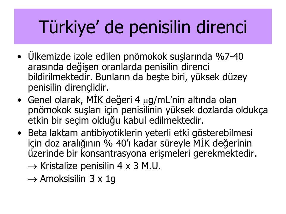 Türkiye' de penisilin direnci