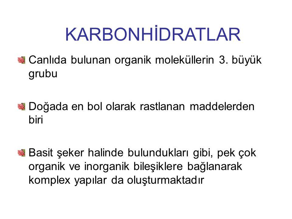 KARBONHİDRATLAR Canlıda bulunan organik moleküllerin 3. büyük grubu