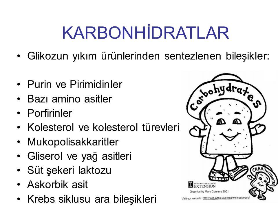 KARBONHİDRATLAR Glikozun yıkım ürünlerinden sentezlenen bileşikler: