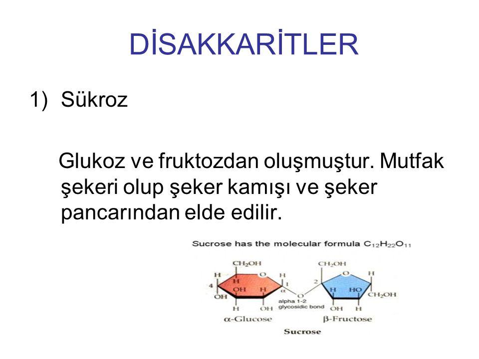 DİSAKKARİTLER Sükroz. Glukoz ve fruktozdan oluşmuştur.