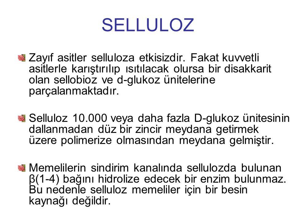 SELLULOZ