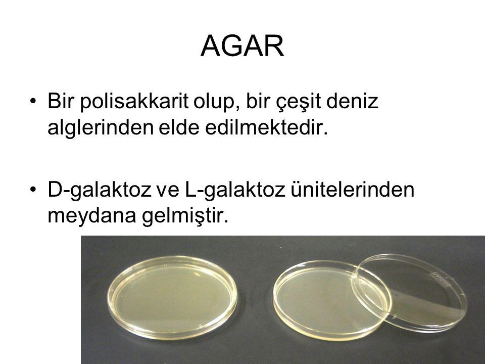 AGAR Bir polisakkarit olup, bir çeşit deniz alglerinden elde edilmektedir.