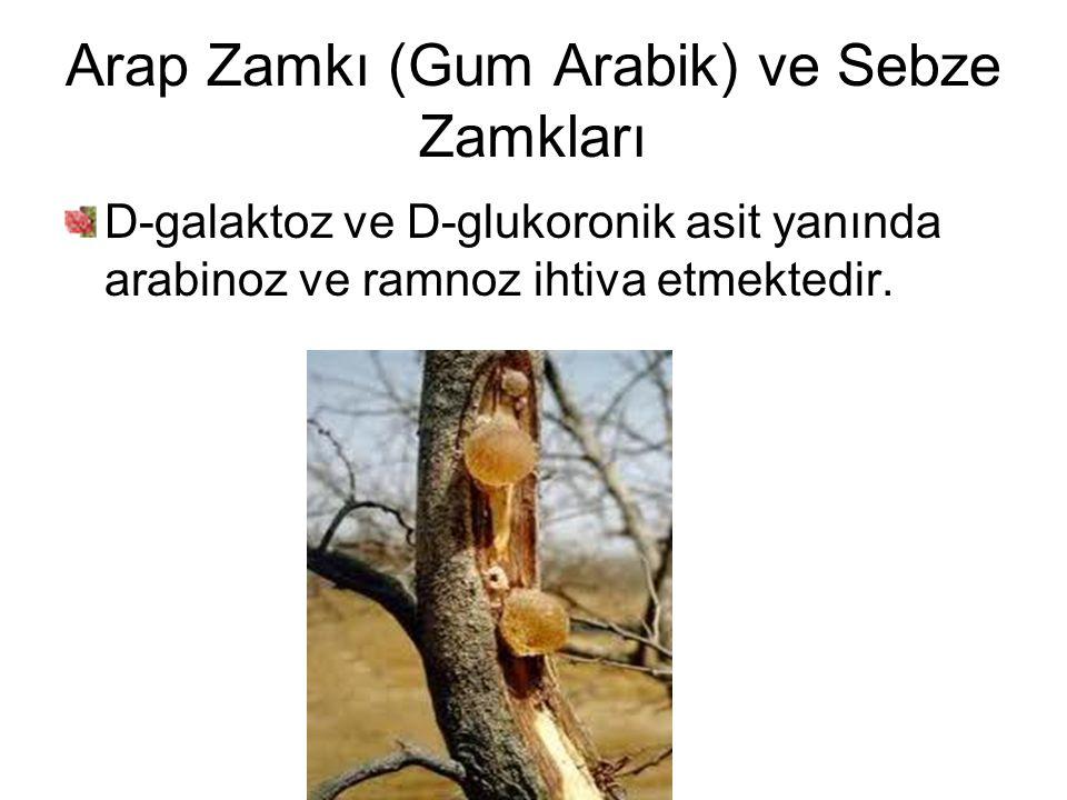 Arap Zamkı (Gum Arabik) ve Sebze Zamkları