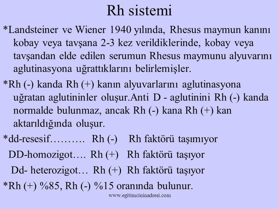 Rh sistemi