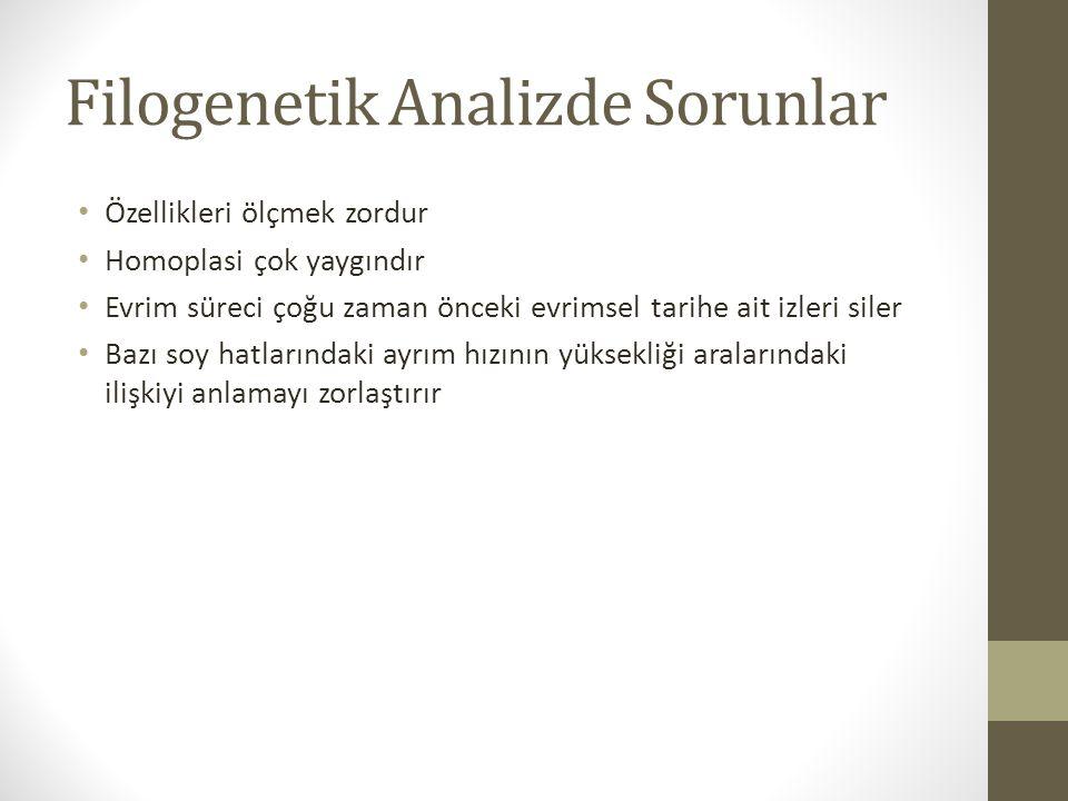 Filogenetik Analizde Sorunlar
