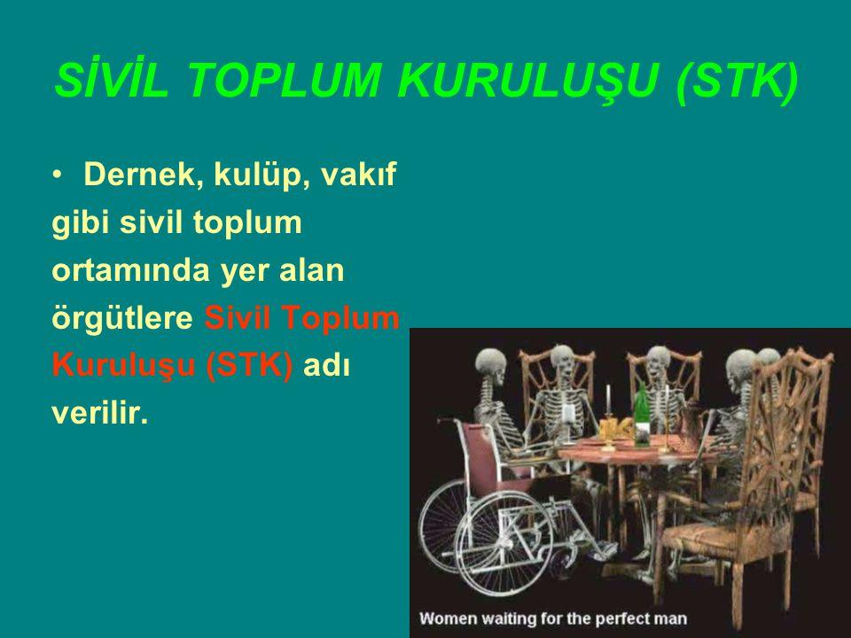 SİVİL TOPLUM KURULUŞU (STK)
