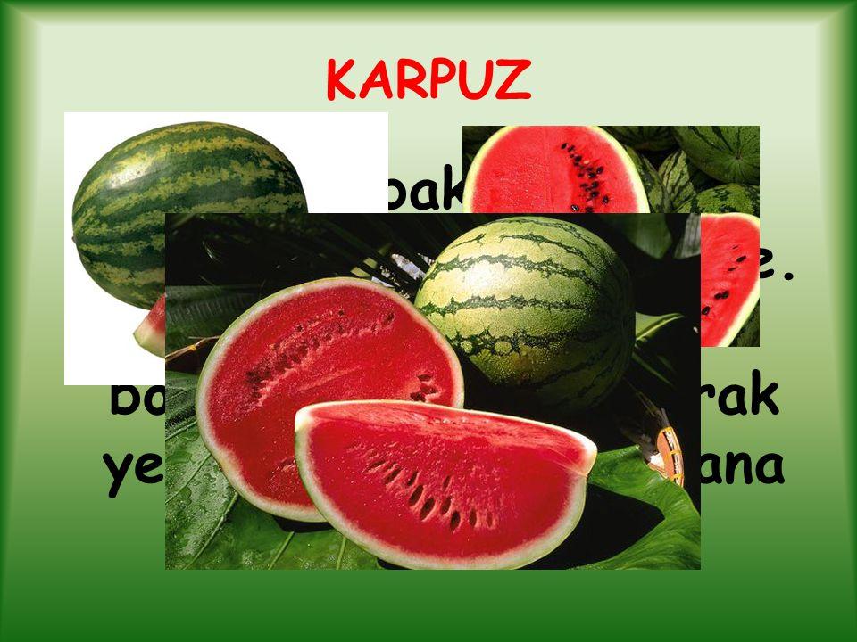 KARPUZ Kabakgiller familyasından sulu meyve.