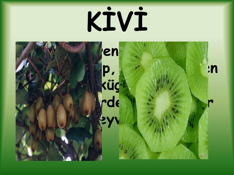 KİVİ Dışı kahverengi dikensi bir yapıya sahip, içi yeşil etten ve siyah küçük yenebilen çekirdeklerden oluşmuş bir meyvedir.