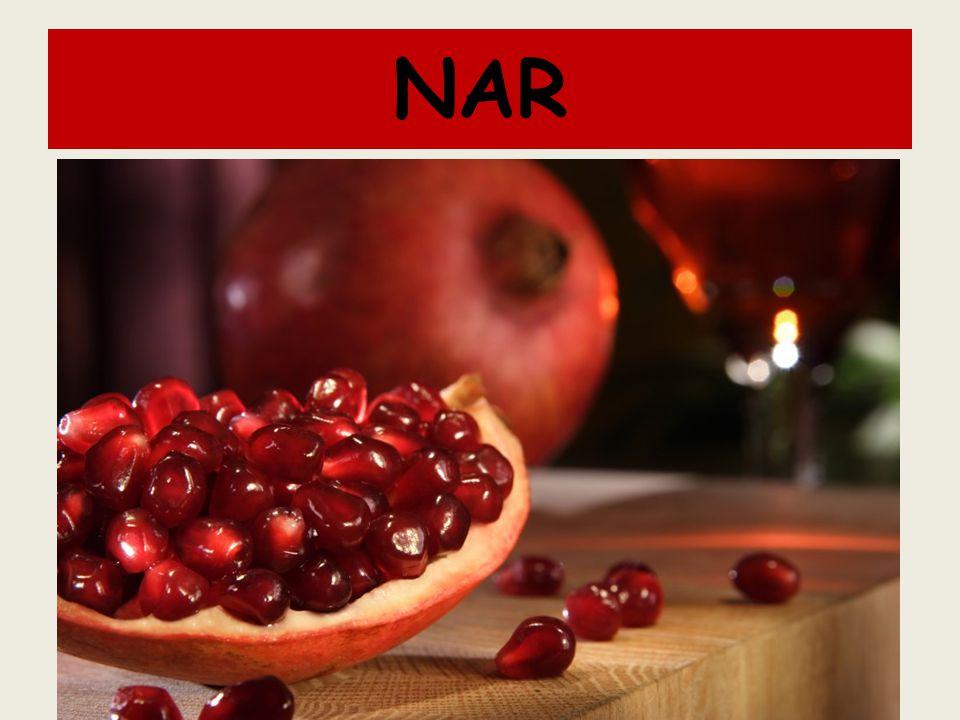 NAR Küre şeklinde ve portakal büyüklüğünde, önceleri yeşil, olgunlukta kırmızımsı renkte, derimsi kabuklu, çok tohumlu ve etli bir meyvedir.