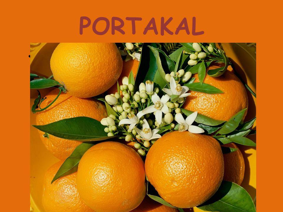 PORTAKAL Turunçgillerden, Akdeniz ülkelerinde yetişen bir ağaç ve bu ağacın yenilebilen meyvesi.