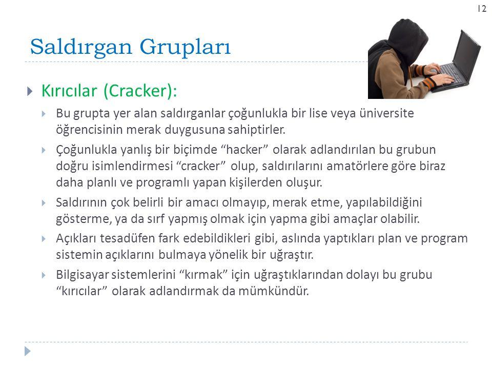 Saldırgan Grupları Kırıcılar (Cracker):