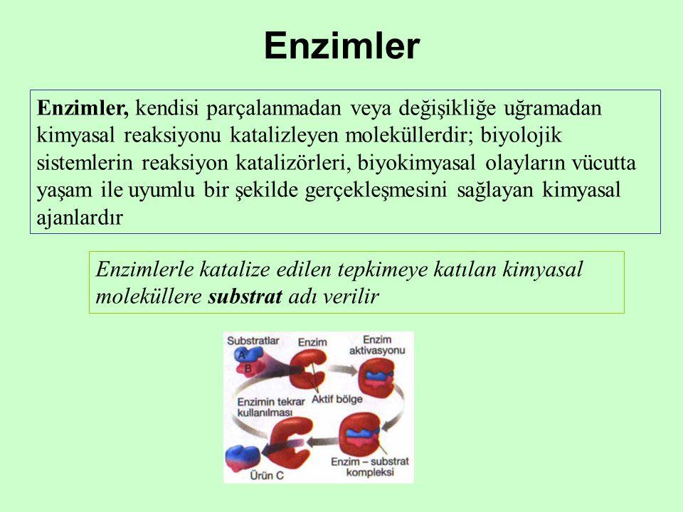 Enzimler