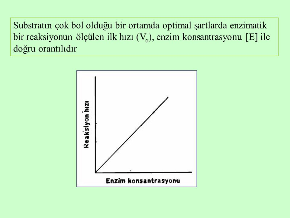 Substratın çok bol olduğu bir ortamda optimal şartlarda enzimatik bir reaksiyonun ölçülen ilk hızı (Vo), enzim konsantrasyonu E ile doğru orantılıdır