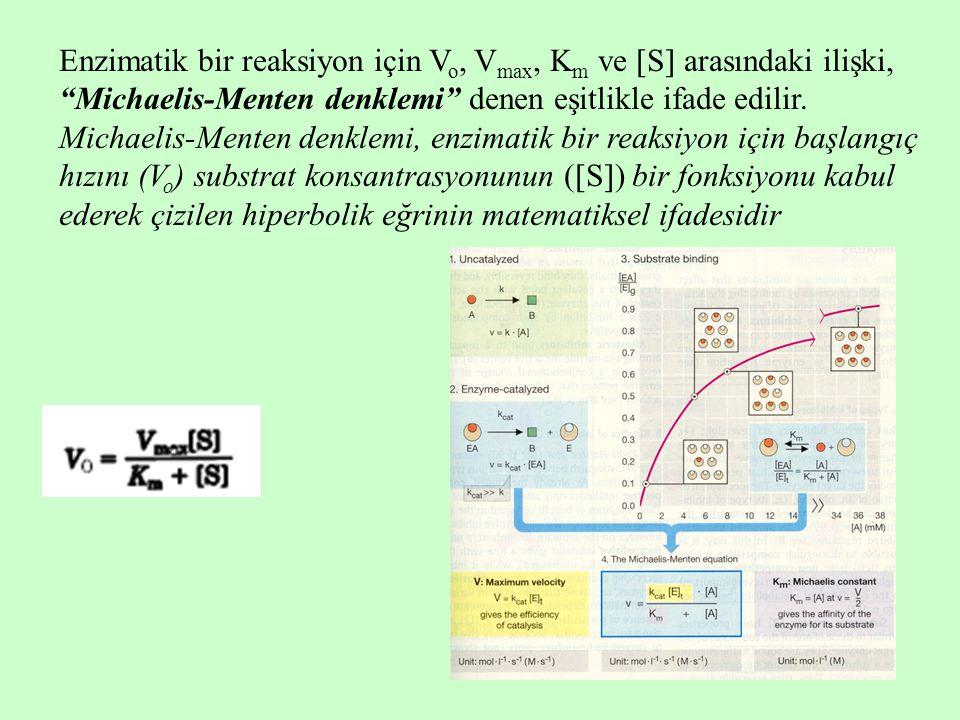 Enzimatik bir reaksiyon için Vo, Vmax, Km ve S arasındaki ilişki, Michaelis-Menten denklemi denen eşitlikle ifade edilir.