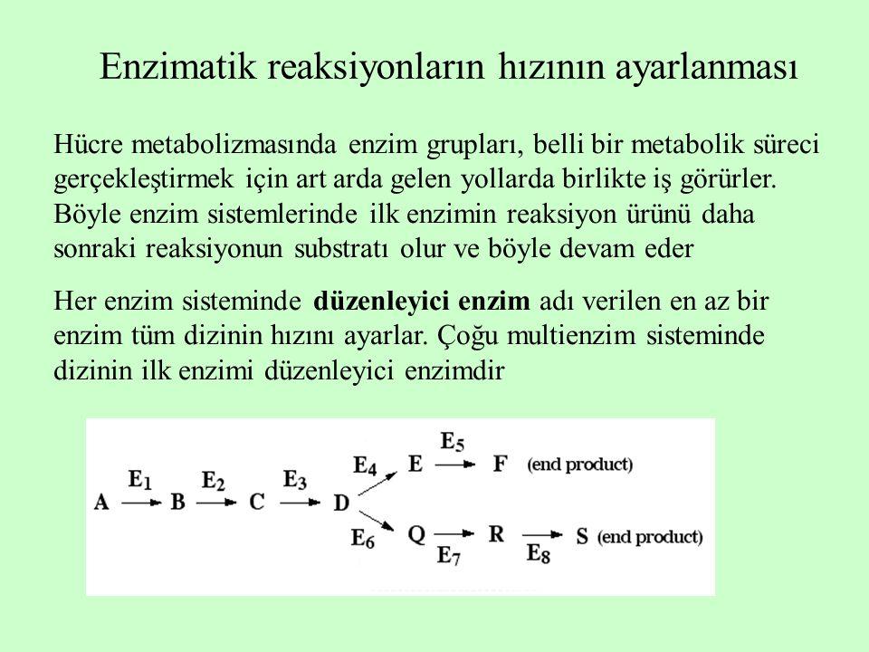Enzimatik reaksiyonların hızının ayarlanması