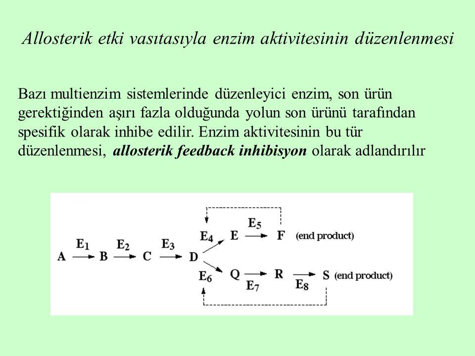 Allosterik etki vasıtasıyla enzim aktivitesinin düzenlenmesi