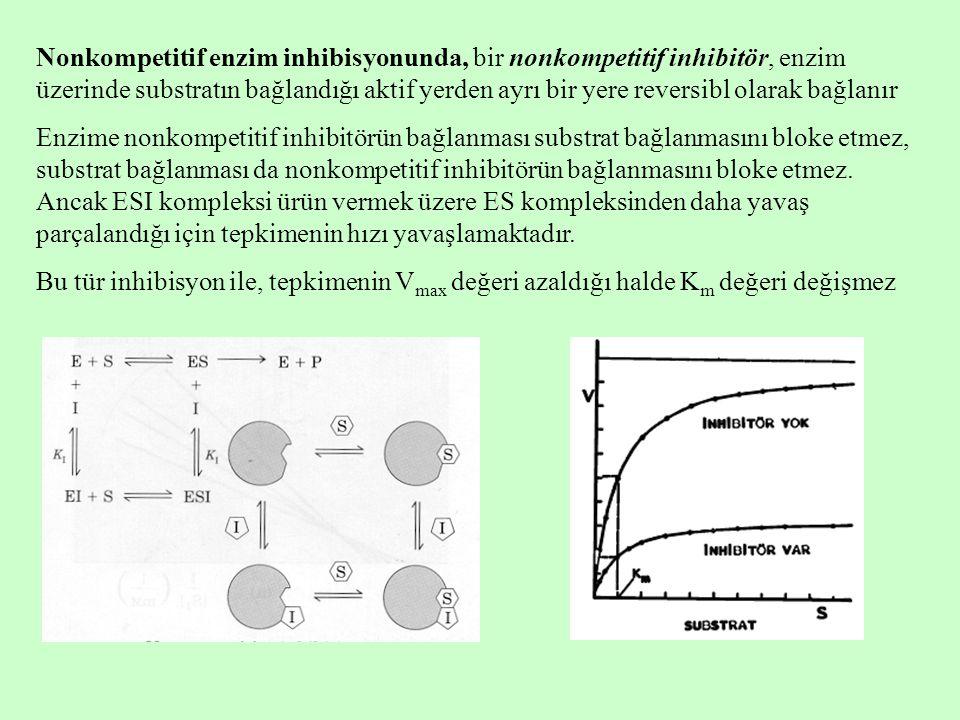 Nonkompetitif enzim inhibisyonunda, bir nonkompetitif inhibitör, enzim üzerinde substratın bağlandığı aktif yerden ayrı bir yere reversibl olarak bağlanır