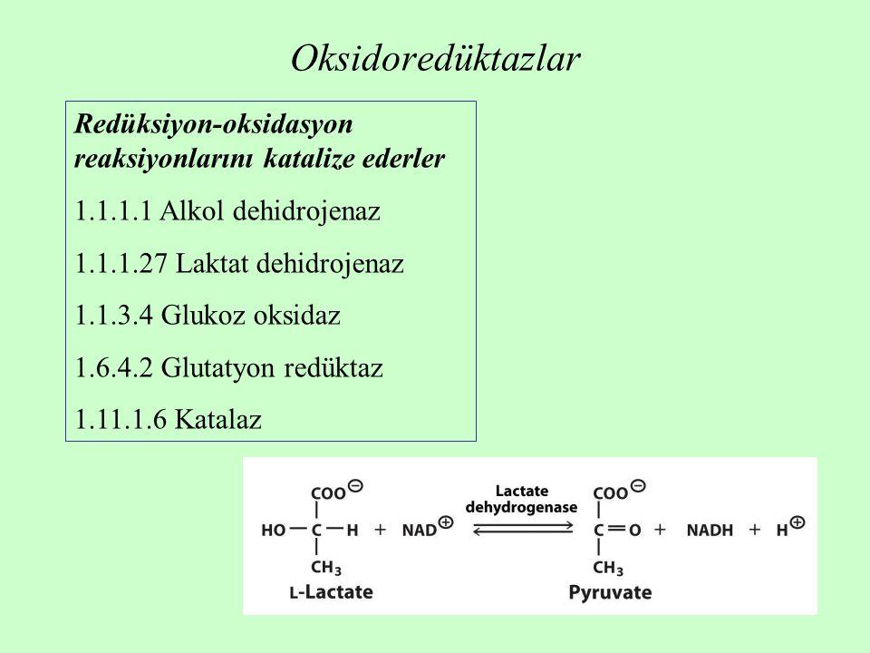 Oksidoredüktazlar Redüksiyon-oksidasyon reaksiyonlarını katalize ederler. 1.1.1.1 Alkol dehidrojenaz.