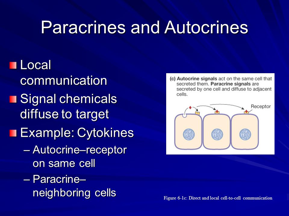 Paracrines and Autocrines