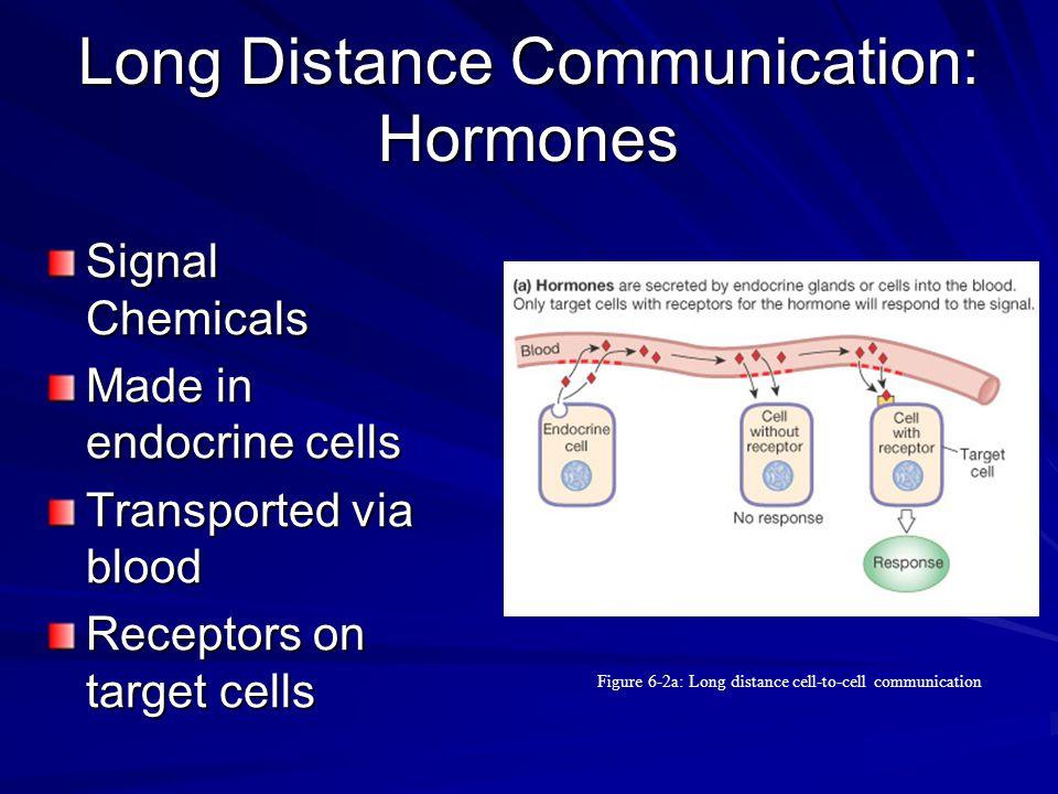 Long Distance Communication: Hormones