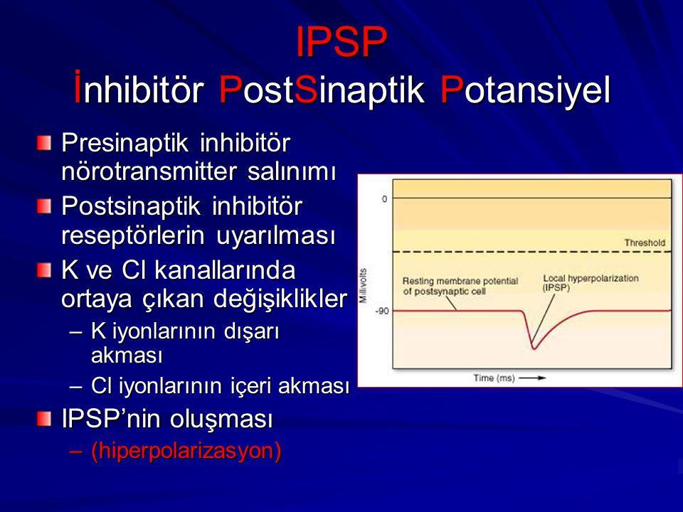 IPSP İnhibitör PostSinaptik Potansiyel