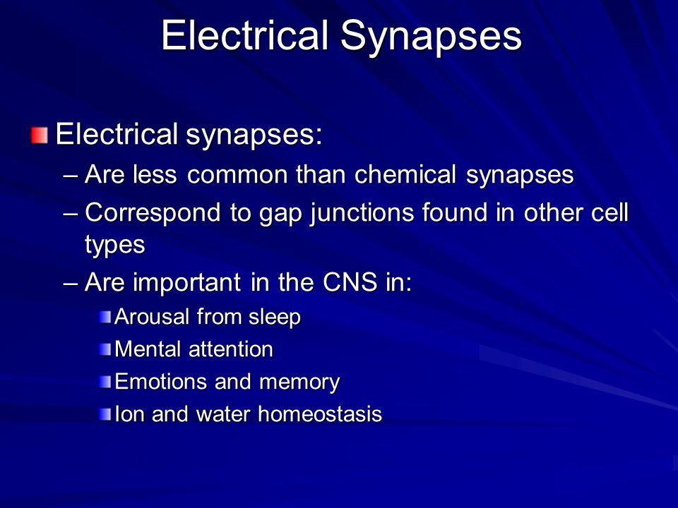 Electrical Synapses Electrical synapses: