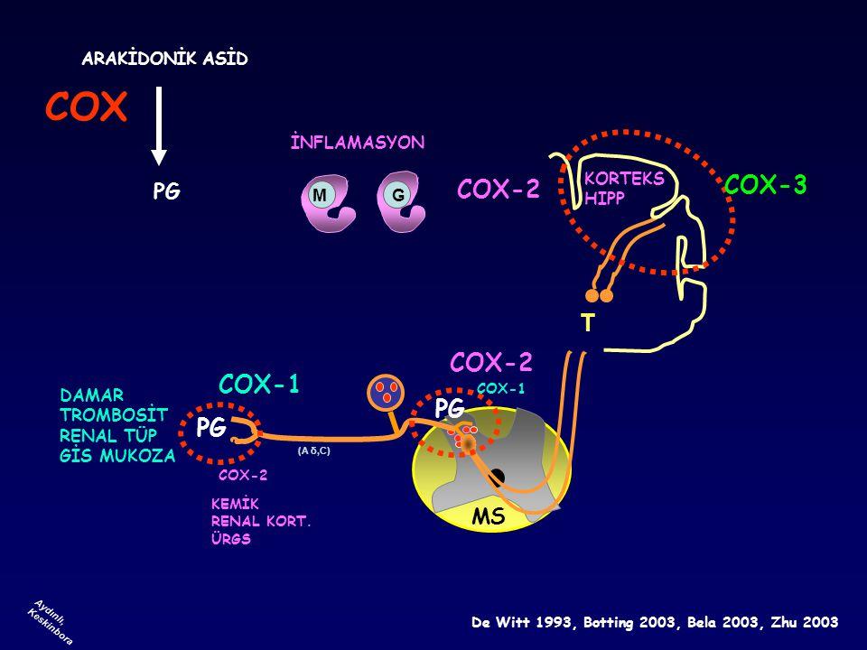 COX COX-3 COX-2 T COX-2 COX-1 PG PG PG MS ARAKİDONİK ASİD İNFLAMASYON