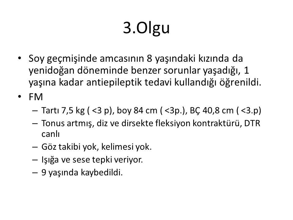 3.Olgu