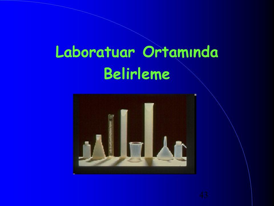 Laboratuar Ortamında Belirleme
