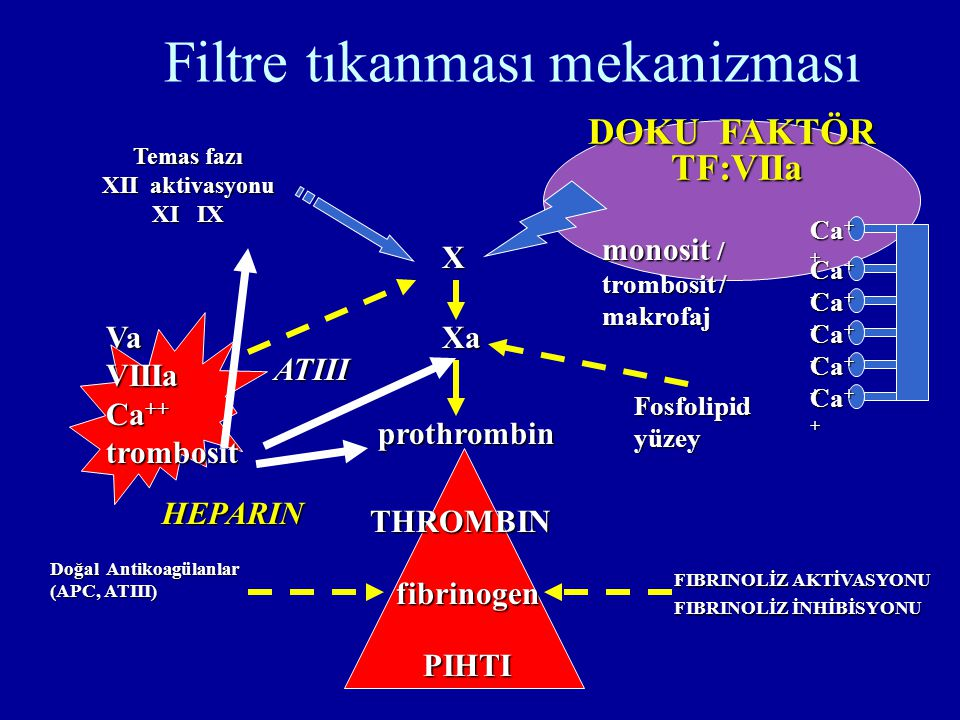 Filtre tıkanması mekanizması