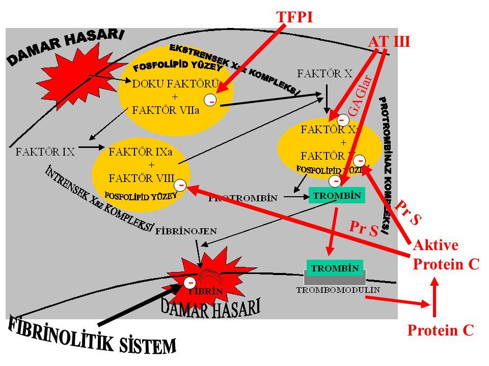 TFPI AT III FİBRİNOLİTİK SİSTEM