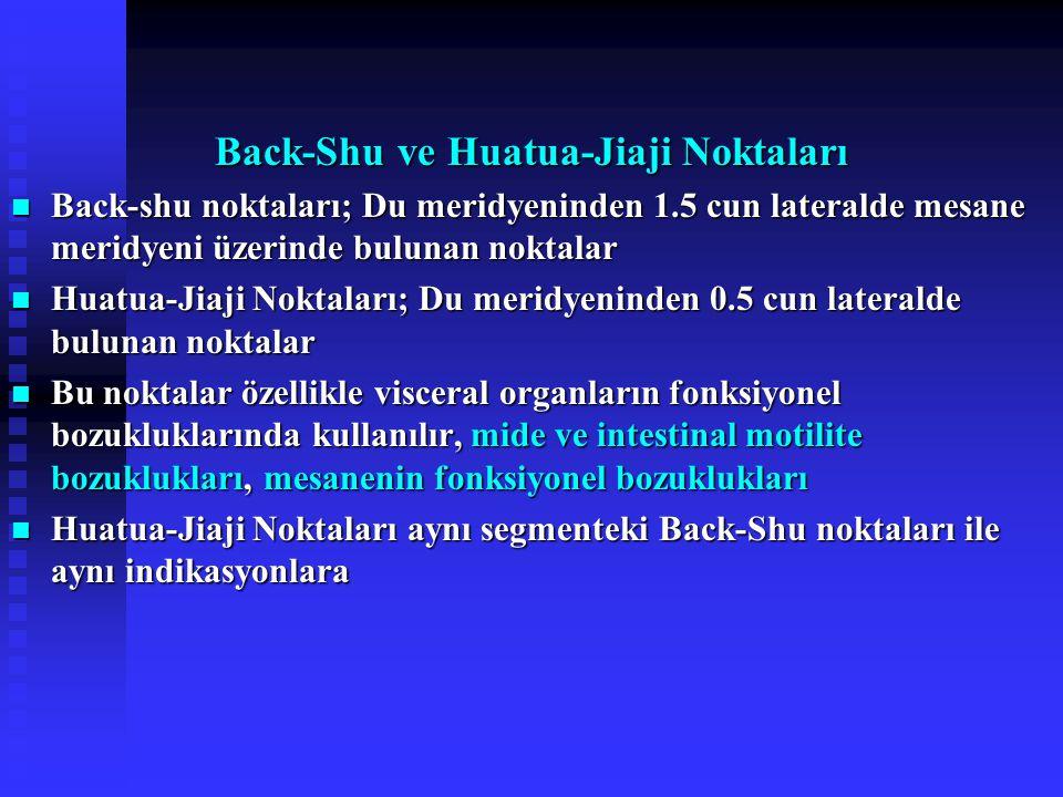 Back-Shu ve Huatua-Jiaji Noktaları