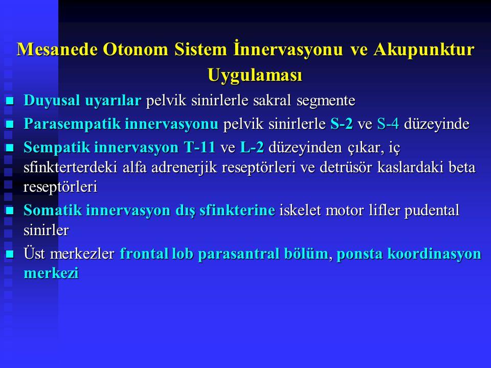 Mesanede Otonom Sistem İnnervasyonu ve Akupunktur Uygulaması