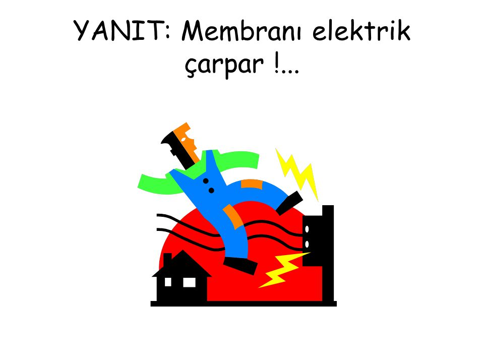 YANIT: Membranı elektrik çarpar !...