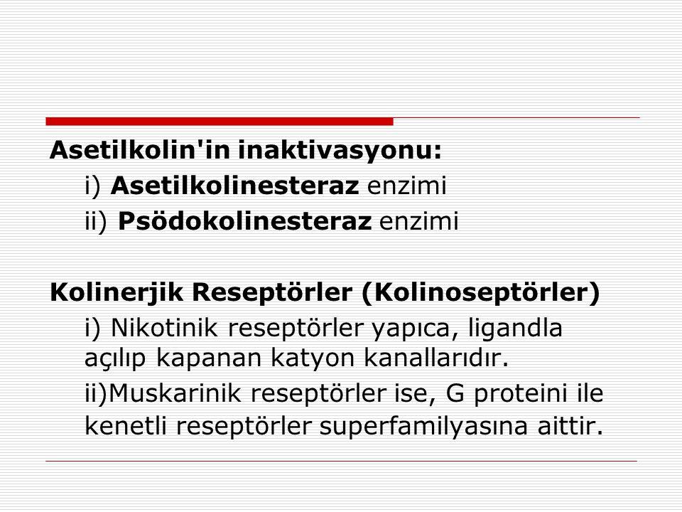 Asetilkolin in inaktivasyonu: